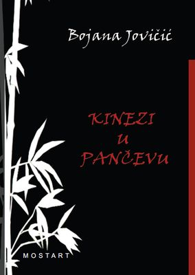Chinese in Pančevo Cover Image