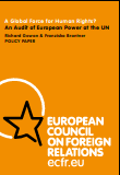 (008) A GLOBAL FORCE FOR HUMAN RIGHTS? AN AUDIT OF EUROPEAN POWER AT THE UN