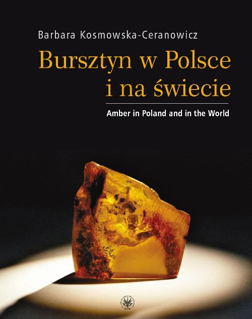 Amber in Poland and in the World, Cover Image