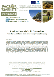 Productivity and Credit Constraints Cover Image