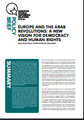 (041) EUROPE AND THE ARAB REVOLUTIONS: A NEW VISION FOR DEMOCRACY AND HUMAN RIGHTS