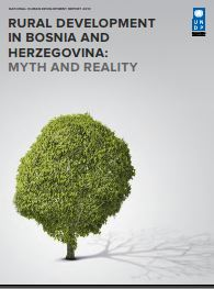 UNDP Human Development Report 2013 - BOSNIA and HERZEGOVINA Cover Image