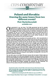 Poland and Slovakia: Drawing the same lesson from two different events? Cover Image