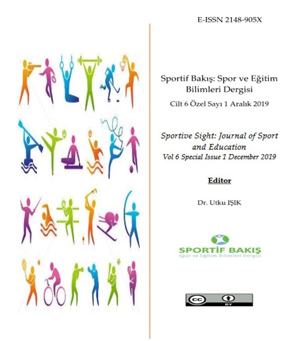 EXAMINATION OF THE VIEWS OF VOLUNTEERS PARTICIPATED IN AN INTERNATIONAL SPORTS ORGANIZATION Cover Image