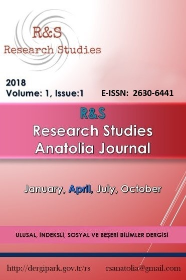 R&S - Research Studies Anatolia Journal Cover Image